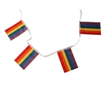 Rainbow small Flags Bunting